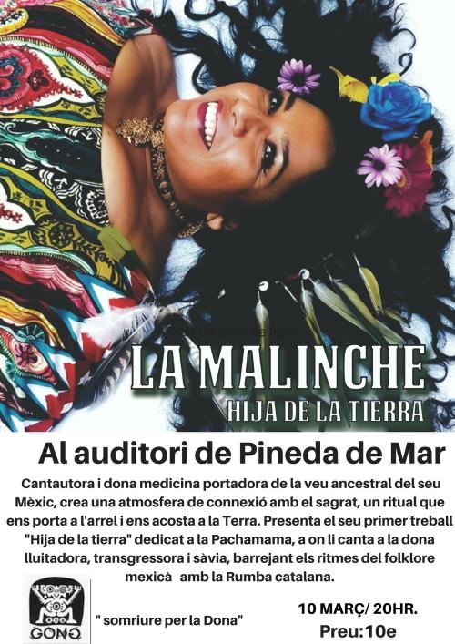 aL AUDITORI DE PINEDA DE MAR (1)